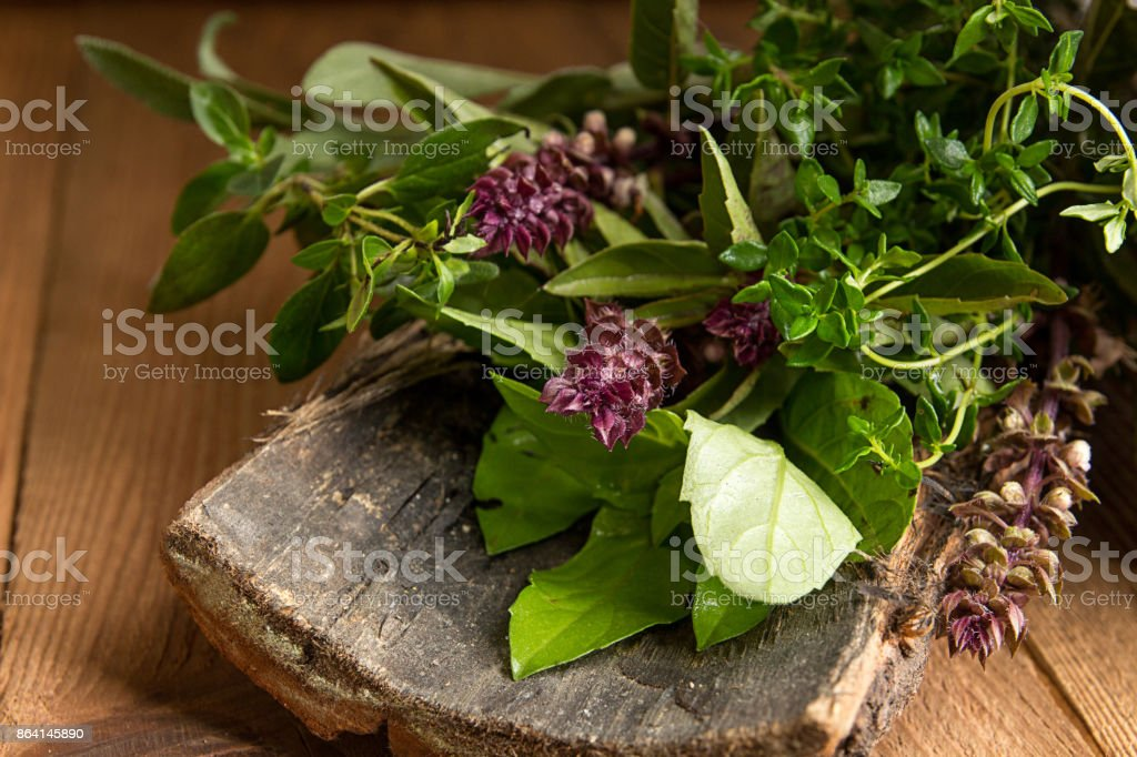 Oregano, sage, basil, thyme herbs on bark on wooden background royalty-free stock photo
