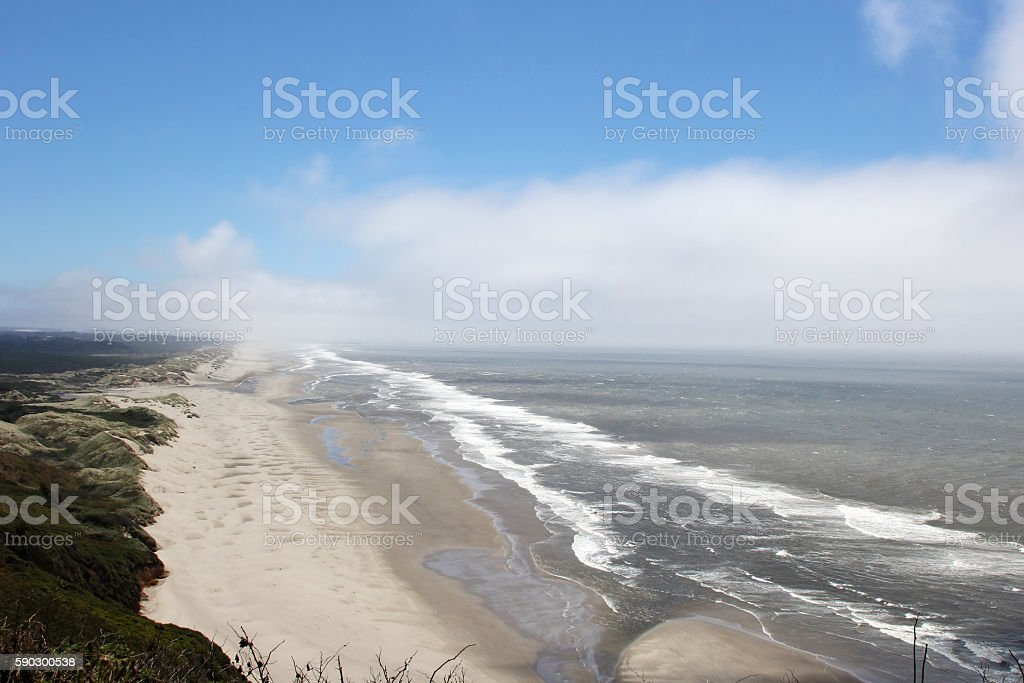 Oregon Beach royaltyfri bildbanksbilder