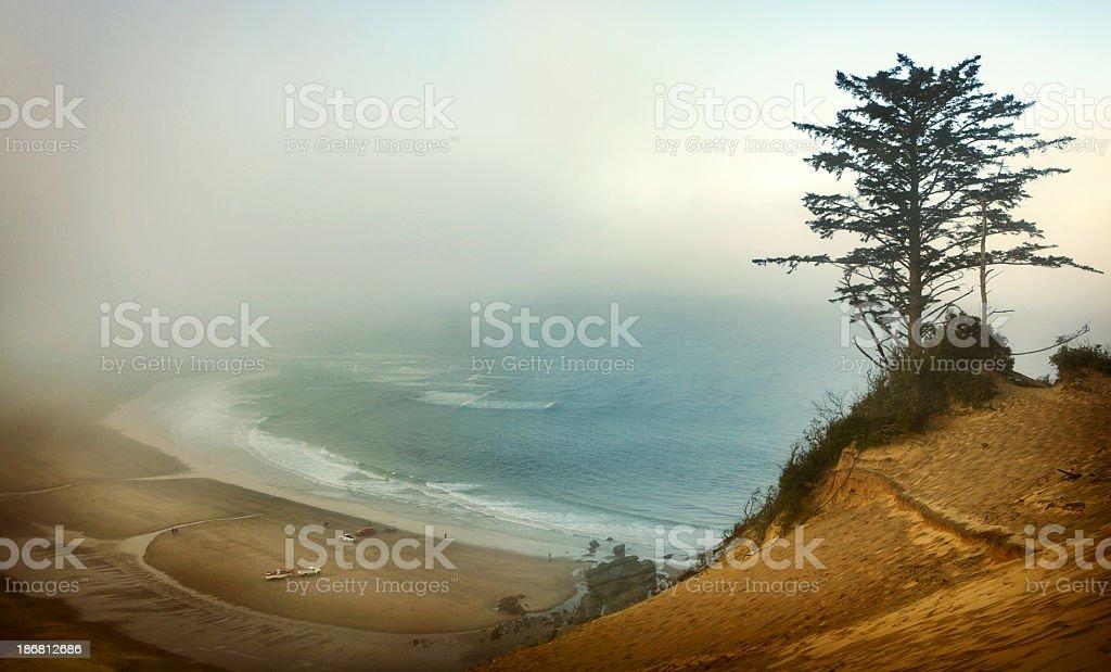 Oregon Coast in the Fog stock photo