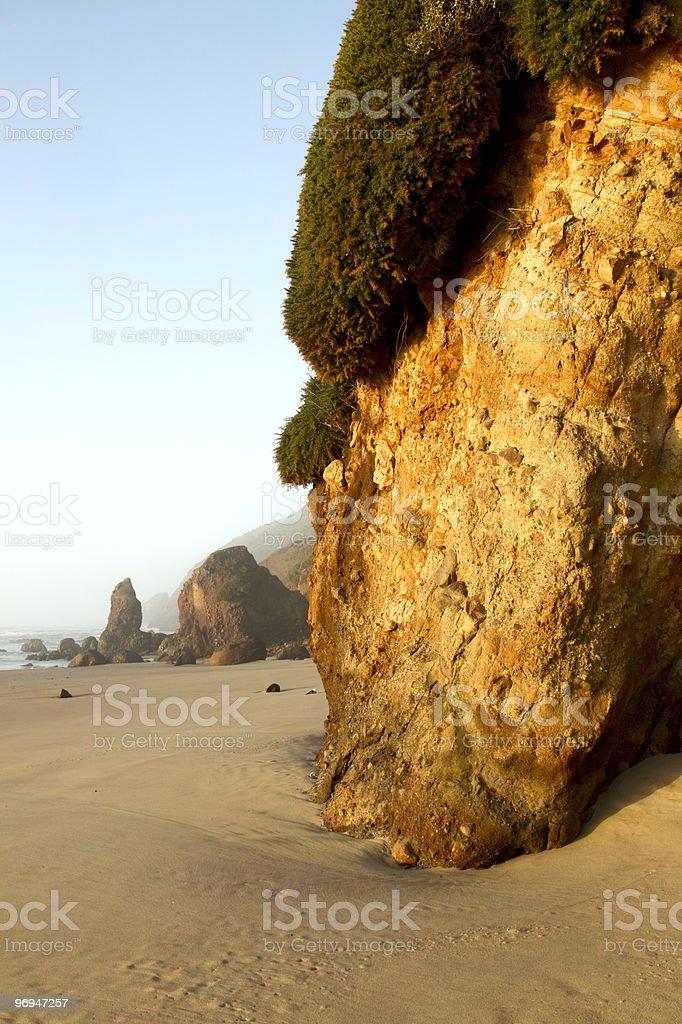 Oregon coast portrait royalty-free stock photo
