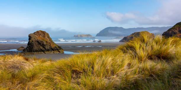Oregon Coast Sand Dünen Ariya Strand . – Foto