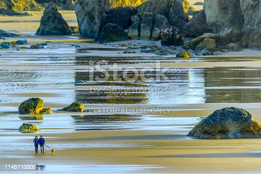Oregon coast USA on March 17, 2018: Couple walking the dog on Bandon Beach on the Oregon Coast