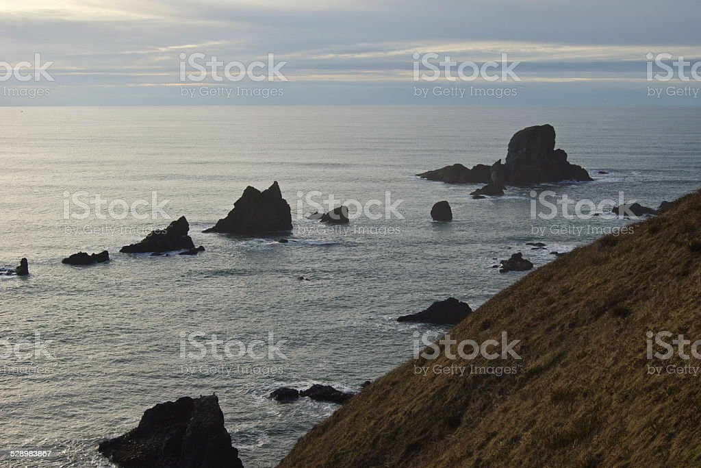 Oregon Floating Rocks stock photo