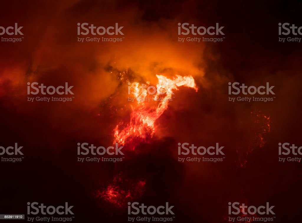 Oregon forest fire. stock photo