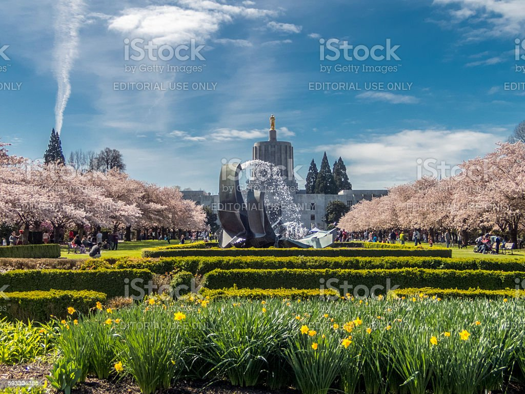 Oregon State Capitol Cherry Blossom Day Capitol Mall with Fountain stock photo
