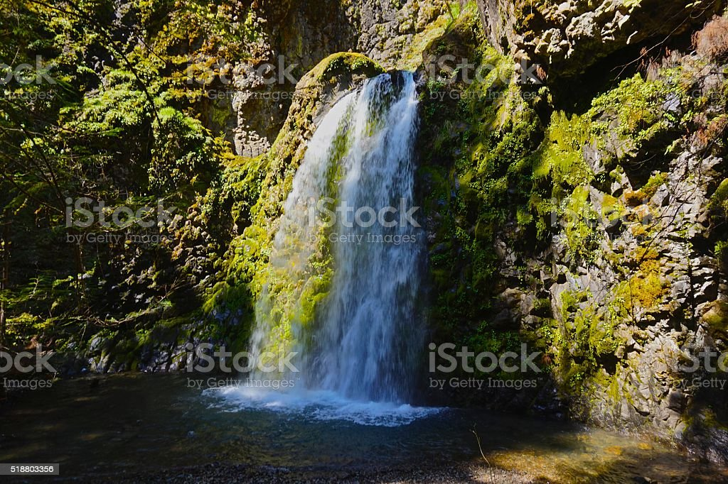 Oregon's Fall Creek Falls stock photo