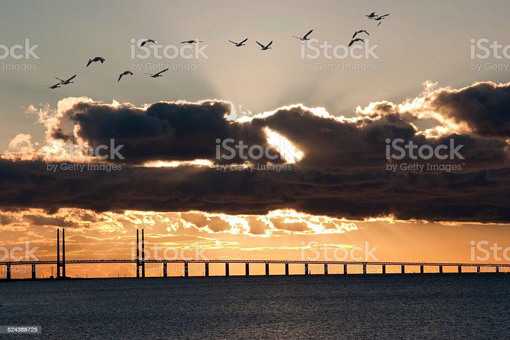 Oresund Bridge,oresunds bron, bridge on the sea ,architecture sunset stock photo