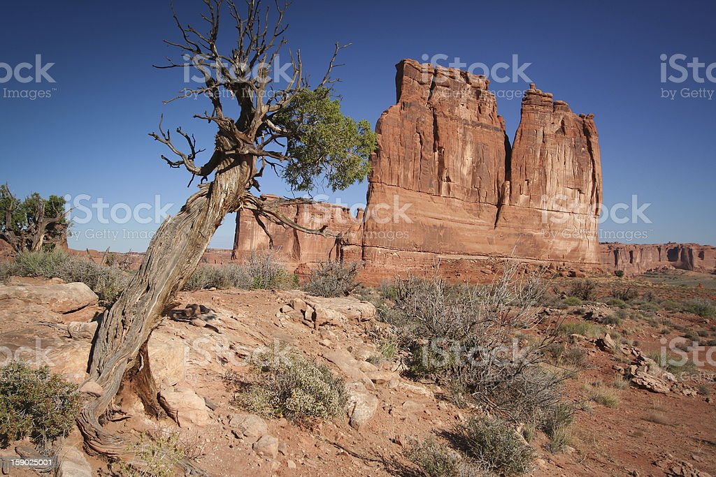 Organ and Tower of Babel at the Arches National Park royalty-free stock photo