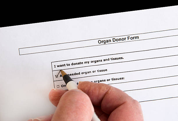 organ donor form - organ donation stock photos and pictures