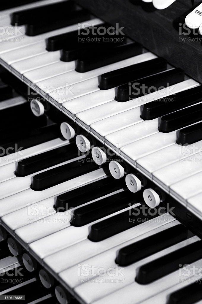 Organ Keys royalty-free stock photo