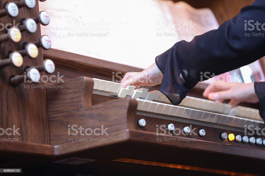Organo - foto stock