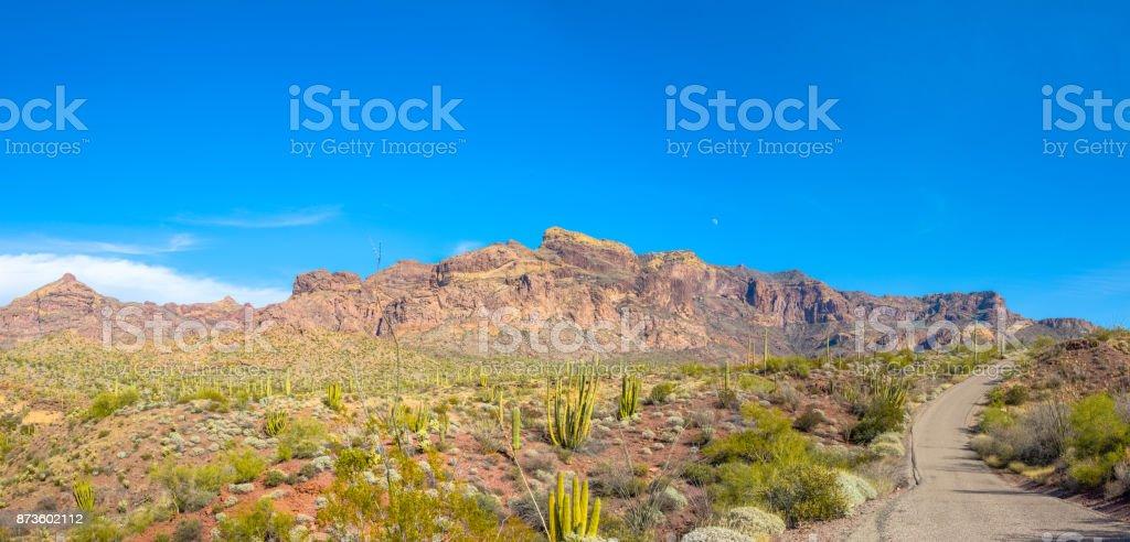 Organ Pipe Cactus National Monument in Arizona's Sonoran Desert - Ajo Mountain Drive Loop Road Traverses Arid Desert stock photo