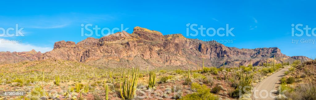 Organ Pipe Cactus National Monument in Arizona's Sonoran Desert - Ajo Mountain Drive Loop Road Cuts Through Small Portion of the Arid Desert on its way to the Ajo Mountain Range stock photo