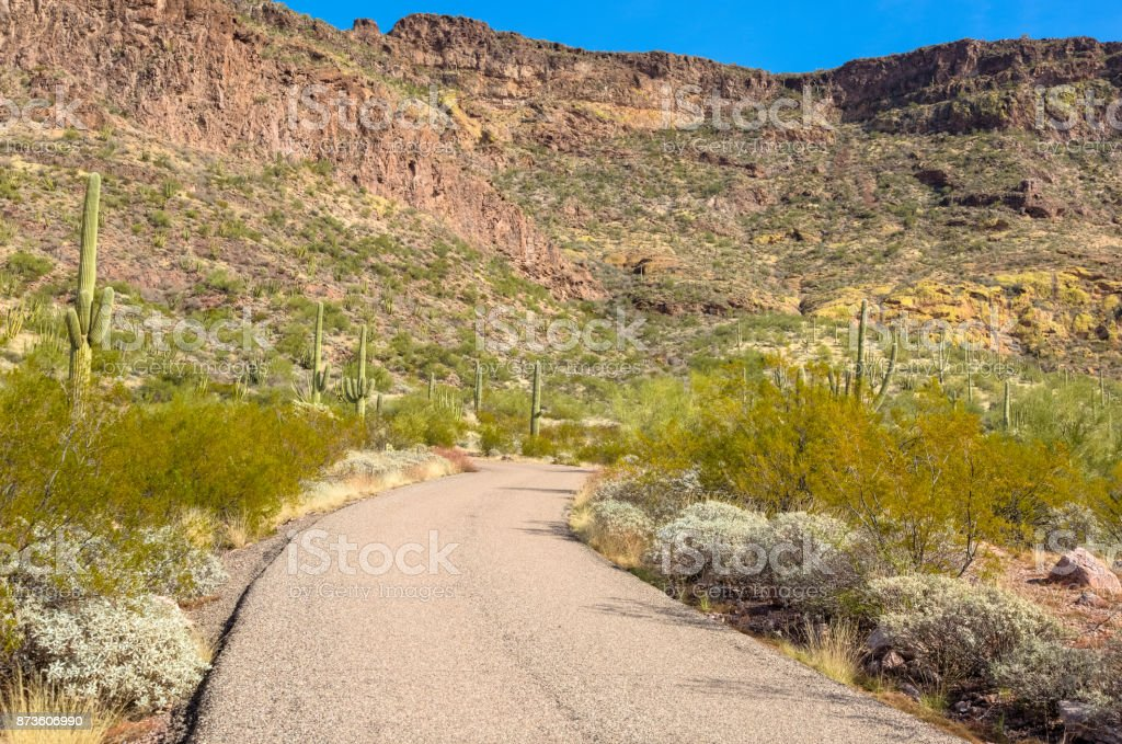 Organ Pipe Cactus National Monument in Arizona's Sonoran Desert - Ajo Mountain Drive Loop Road Leads to Steep Mountain Range Appearing Colorful in the Sunshine stock photo