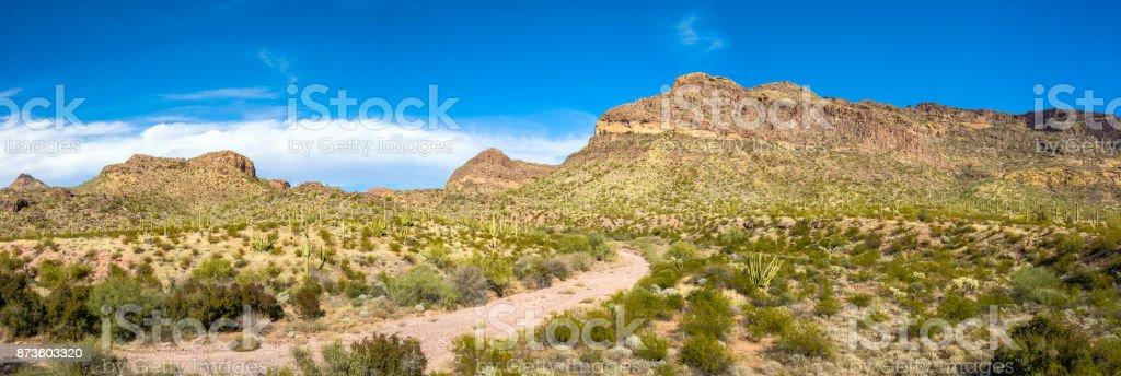 Organ Pipe Cactus National Monument in Arizona's Sonoran Desert, Arid but Beautiful under a Brilliant Blue Sky stock photo