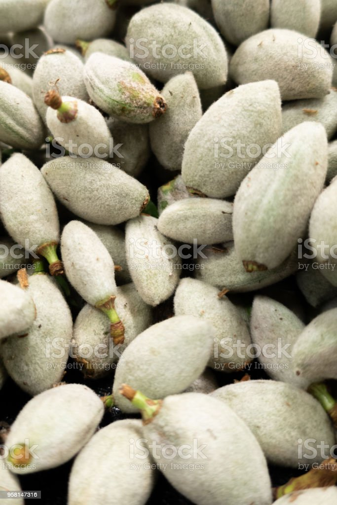 organic almond stock photo
