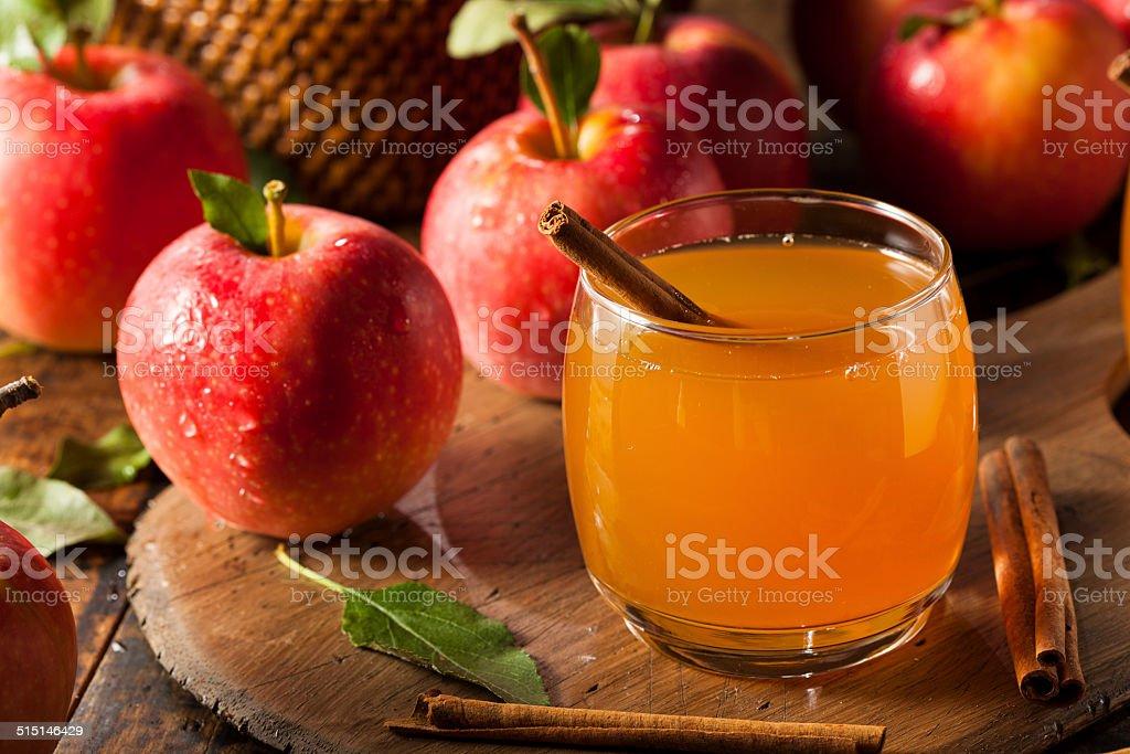 Organic Apple Cider with Cinnamon stock photo
