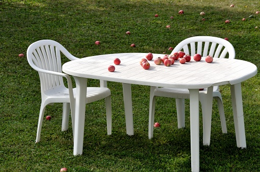 Organic apples on a white table in the garden