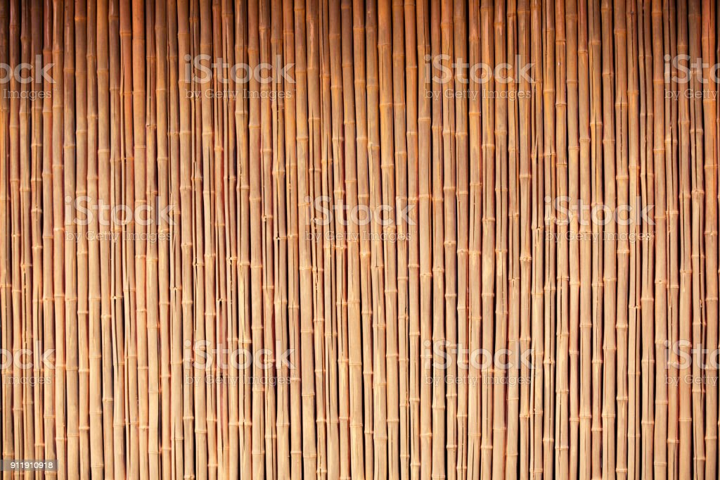 Organic Bamboo background stock photo