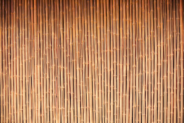 organic bamboo background - bamboo stock photos and pictures