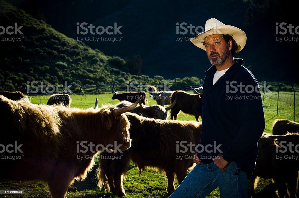 Organic Beef Farmer Rancher stock photo