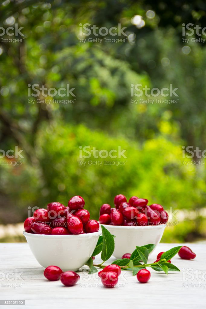 Organic berries dogwood in white bowls on a green natural background. Red juicy berries. Copy space stock photo
