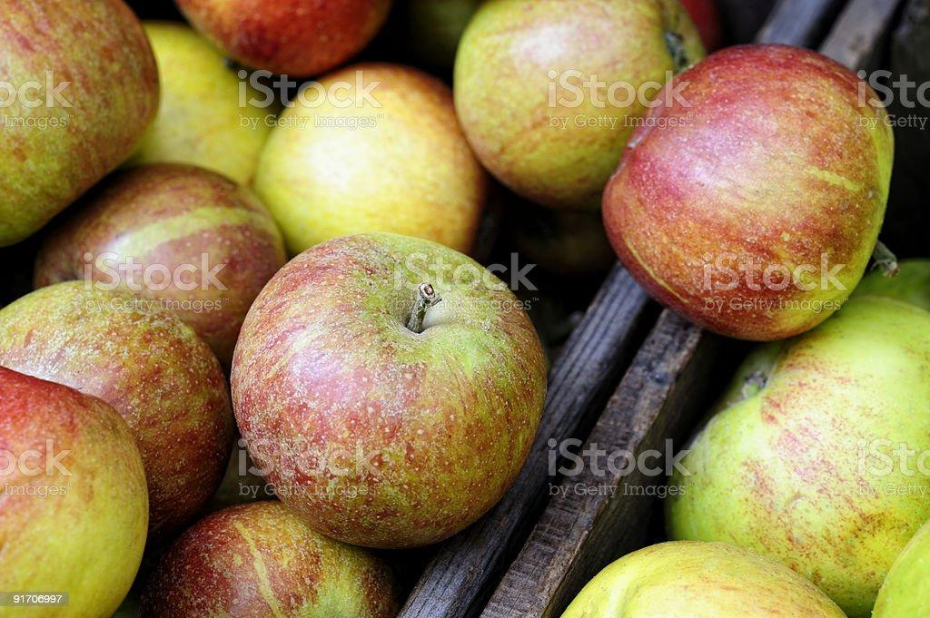 Organic Braeburn apples stock photo
