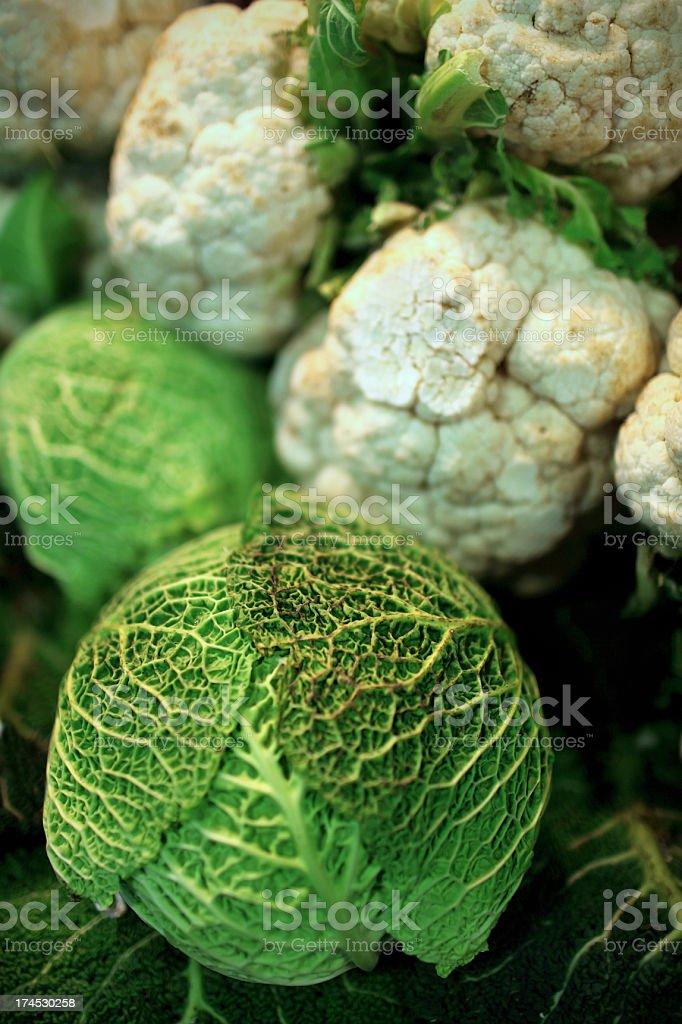 organic cabbage stock photo