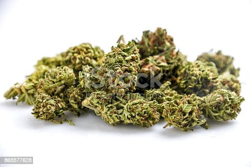Heap of Organic Cannabis on white background
