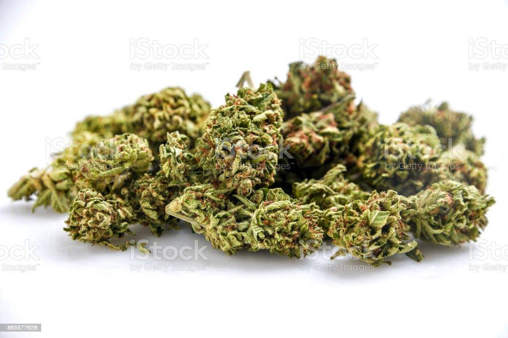 Bio Cannabis – Foto