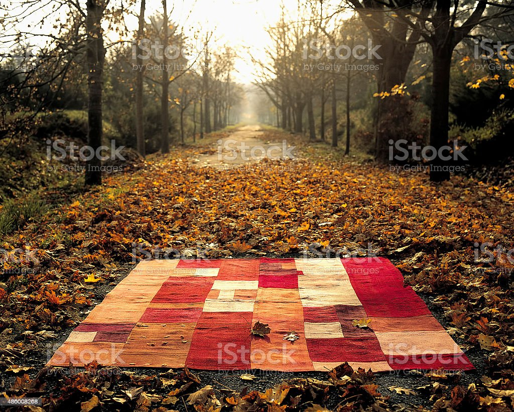 Organic carpet stock photo