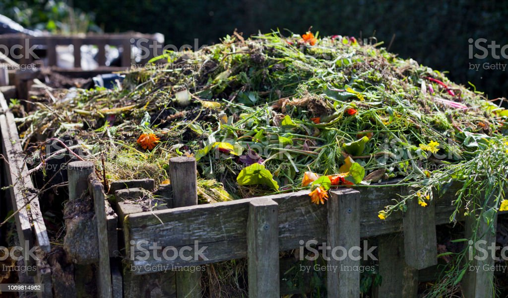 Organic compost with green waste - process which makes natural...
