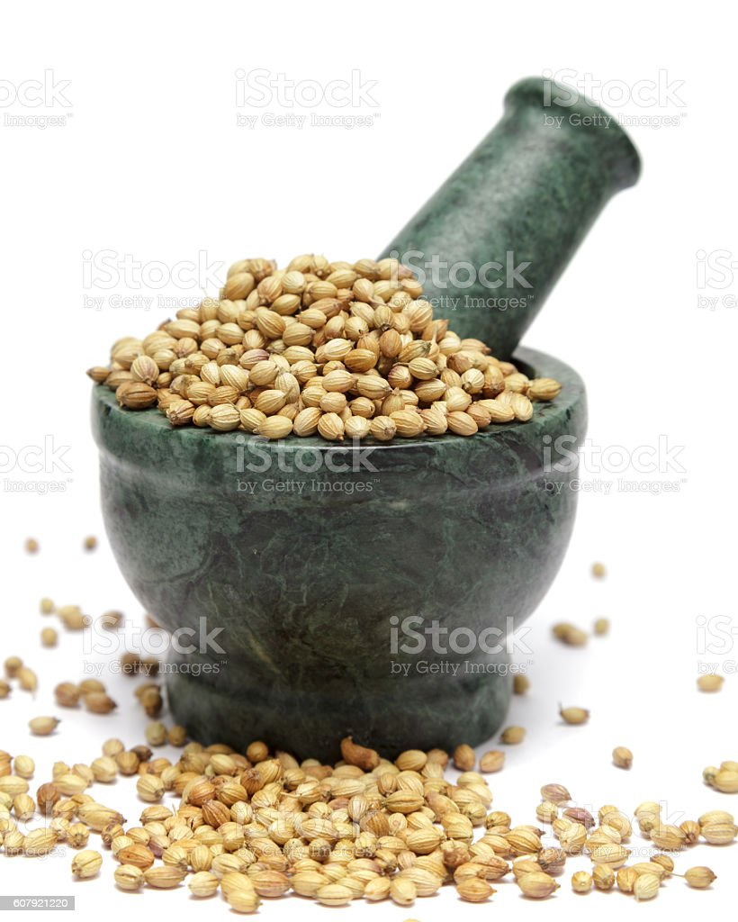 Organic Dried coriander seeds (Coriandrum sativum) on marble pestle. stock photo