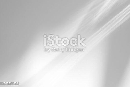 istock Organic drop shadow on a white wall 1263614303