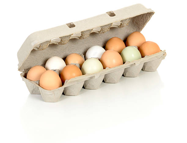 Organic Eggs from Free Range Chickens stock photo