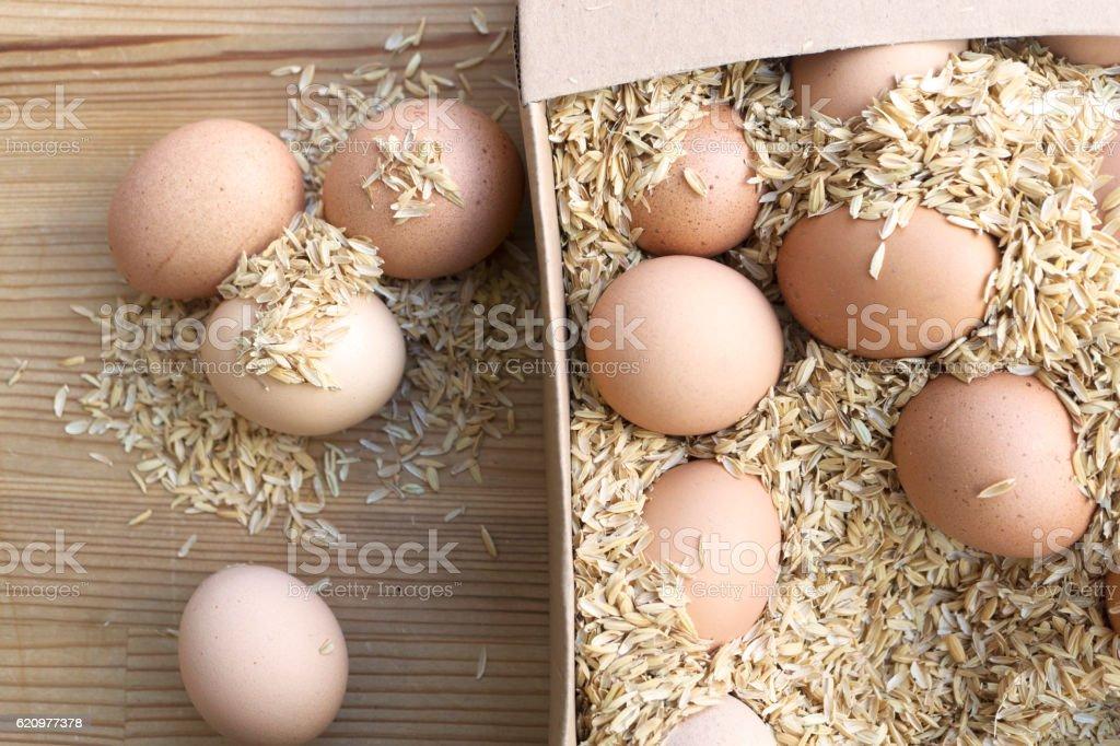 Ovos orgânicos  foto royalty-free