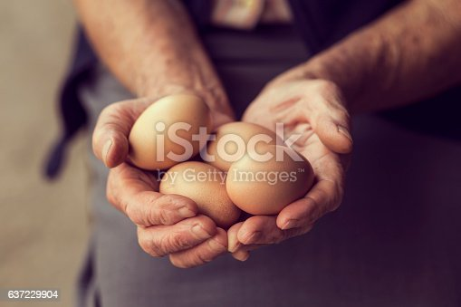 Close up of an elderly woman's hands, holding organic produced eggs. Selective focus