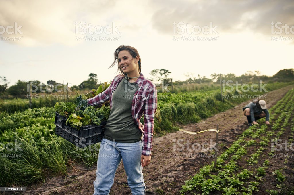 Organic Farming Benefits You And The Environment Stock Photo