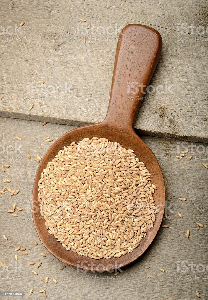 Organic Farro Grains royalty-free stock photo