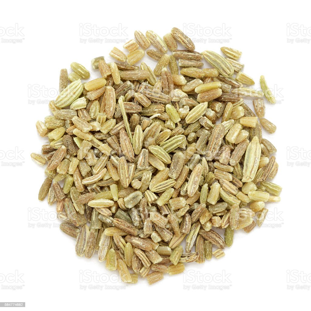 Organic fennel (Foeniculum vulgare) in big cut size. stock photo