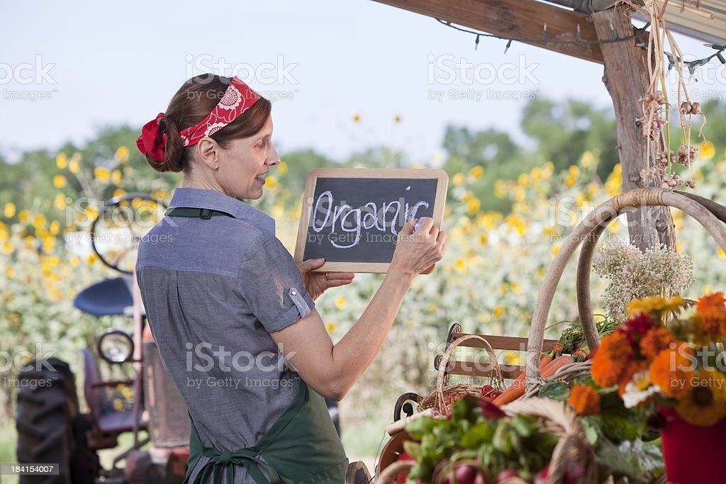 Organic foods royalty-free stock photo