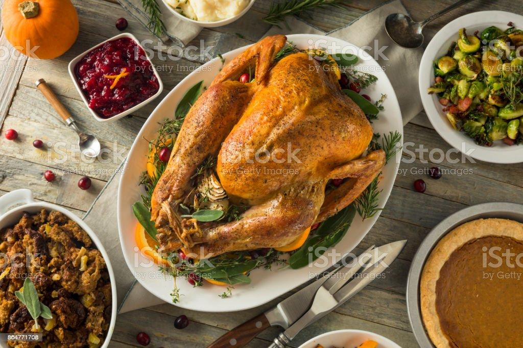 Organic Free Range Homemade Thanksgiving Turkey stock photo