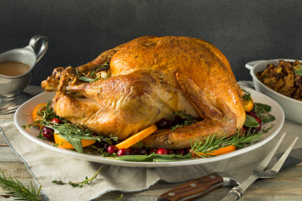 organic free range homemade thanksgiving turkey - turkey zdjęcia i obrazy z banku zdjęć