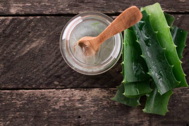 Aloe Vera frais biologique à l'Aloe Vera gel sur fond en bois, herbe polyvalent. - Photo