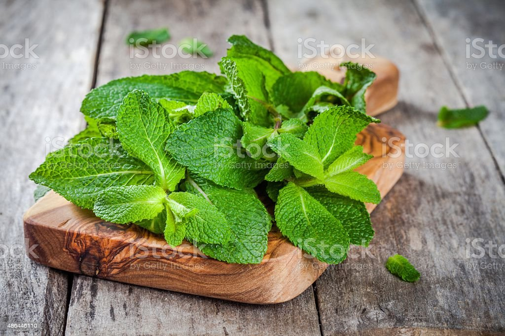organic fresh bunch of mint on wooden cutting board stock photo