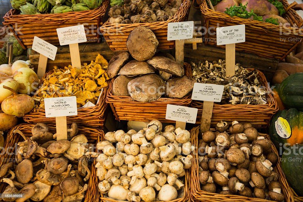 Organic Fresh Mushrooms in Market, New York City stock photo