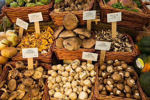 Frisches Bio-Pilze im Market, New York City – Foto