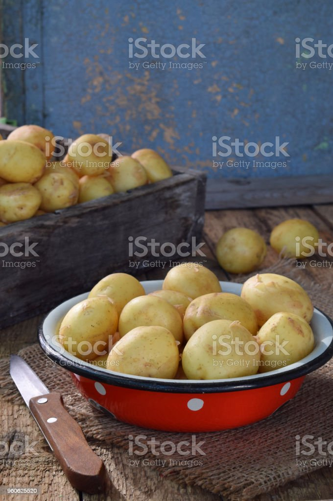 Organic fresh summer vegetables - first harvest of organically grown new potatoes on wooden background. Healthy food. Copy space stock photo
