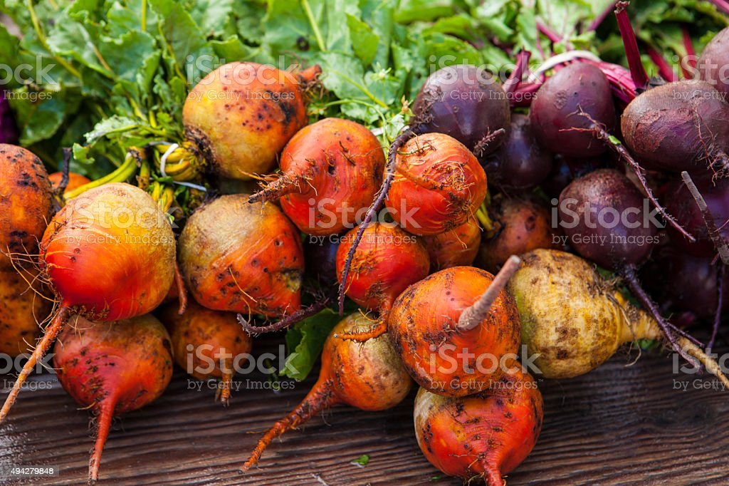 organic golden and purple beets, Farmers Market stock photo
