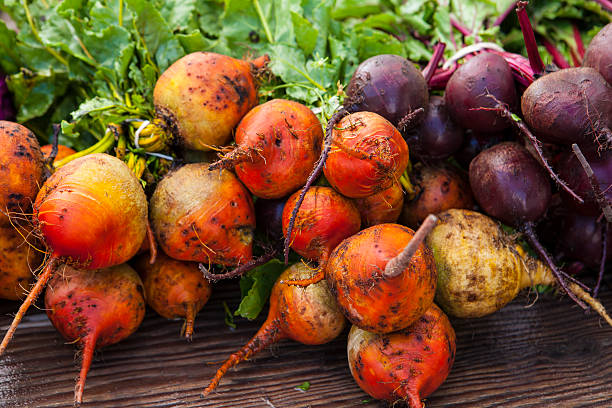Bio-golden und Lila Beete, Farmers Market – Foto
